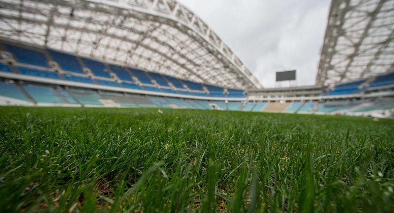 Футбольное поле стадиона «Фишт»
